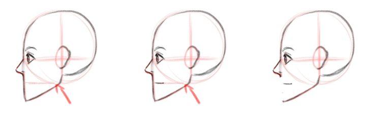 Базовая форма губ, вид сбоку или в профиль
