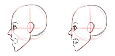 Открытый рот, зубы и язык, вид сбоку