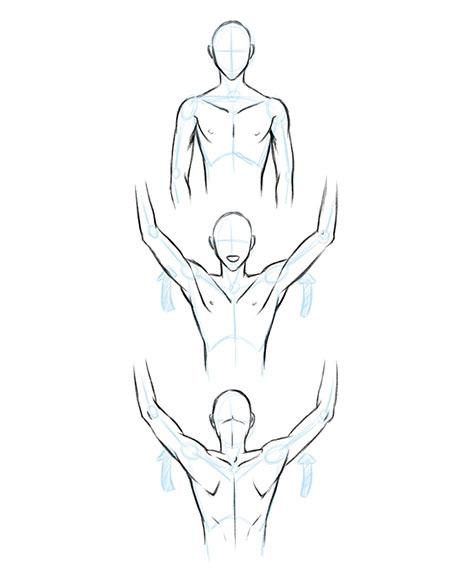 Мыщцы рук спереди и сзади