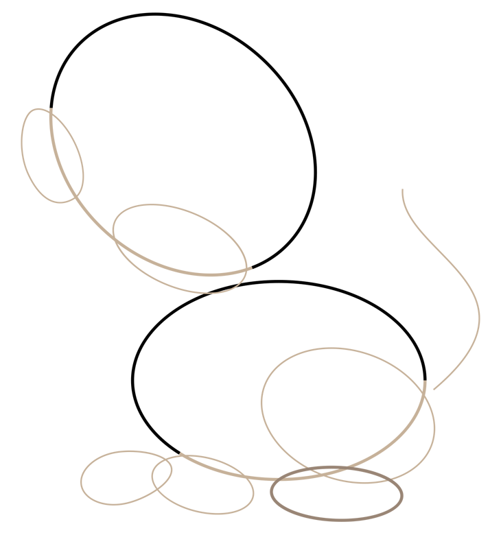 Как нарисовать кошку. Шаг 2. Щеки, лапы и хвост