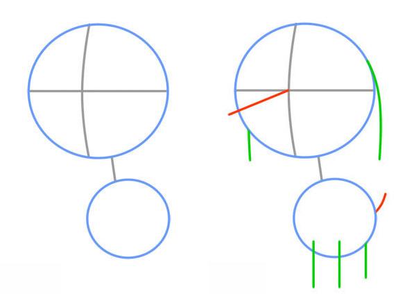 Как нарисовать милого щенка. Шаг 1. Первичные формы - голова и тело. Рисуем направляющие линии для носа, ушей, лап и хвоста