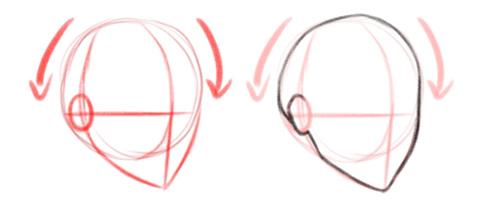 Обводим контуры формы головы, вид в три четверти