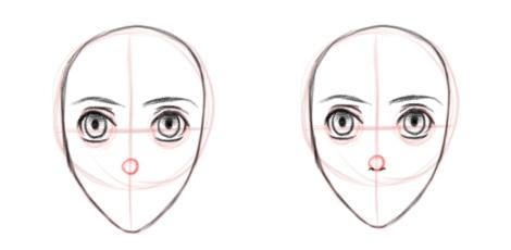 Расположение носа на лице, вид в анфас