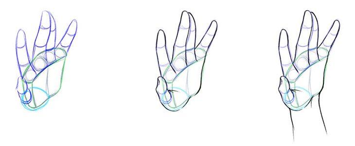 Рисуем кисть руки в три четверти