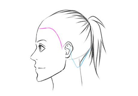 Обозначаем направляющую для линии роста волос сзади