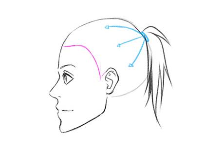Направляющие по напрвлению к линии роста волос
