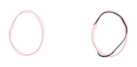 Вспомогательный овал и внешний контур уха