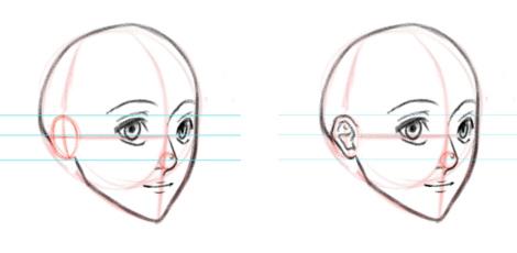 Уши на голове, вид в три четверти