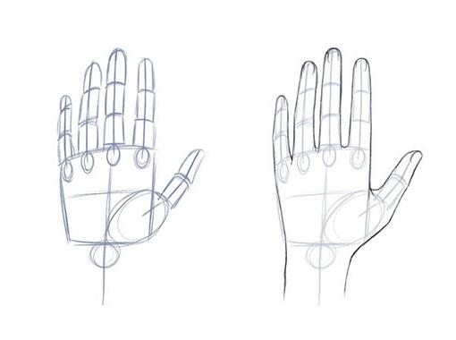 Как нарисовать руку. Аниме